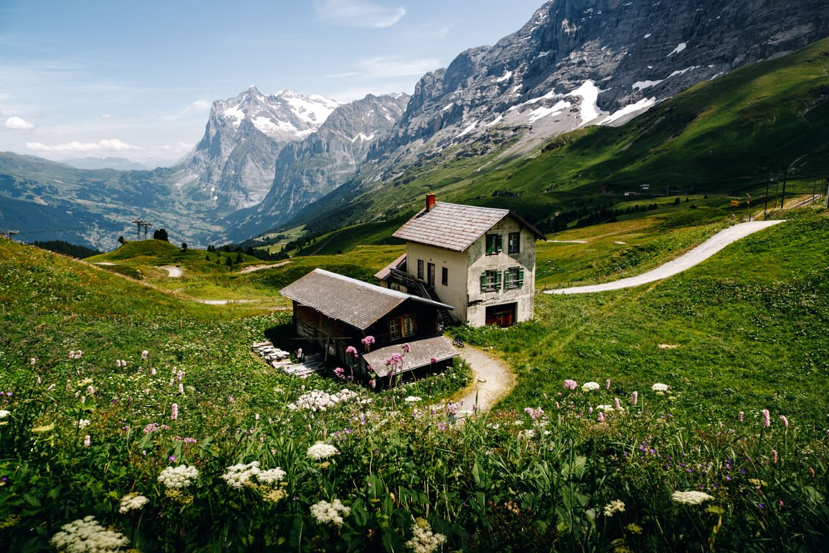 Summer in the Alps, hiking.