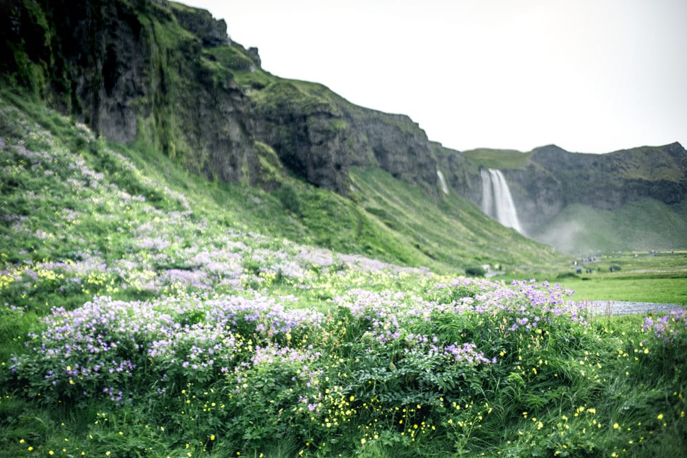 10 day Iceland itinerary / 10 days in Iceland