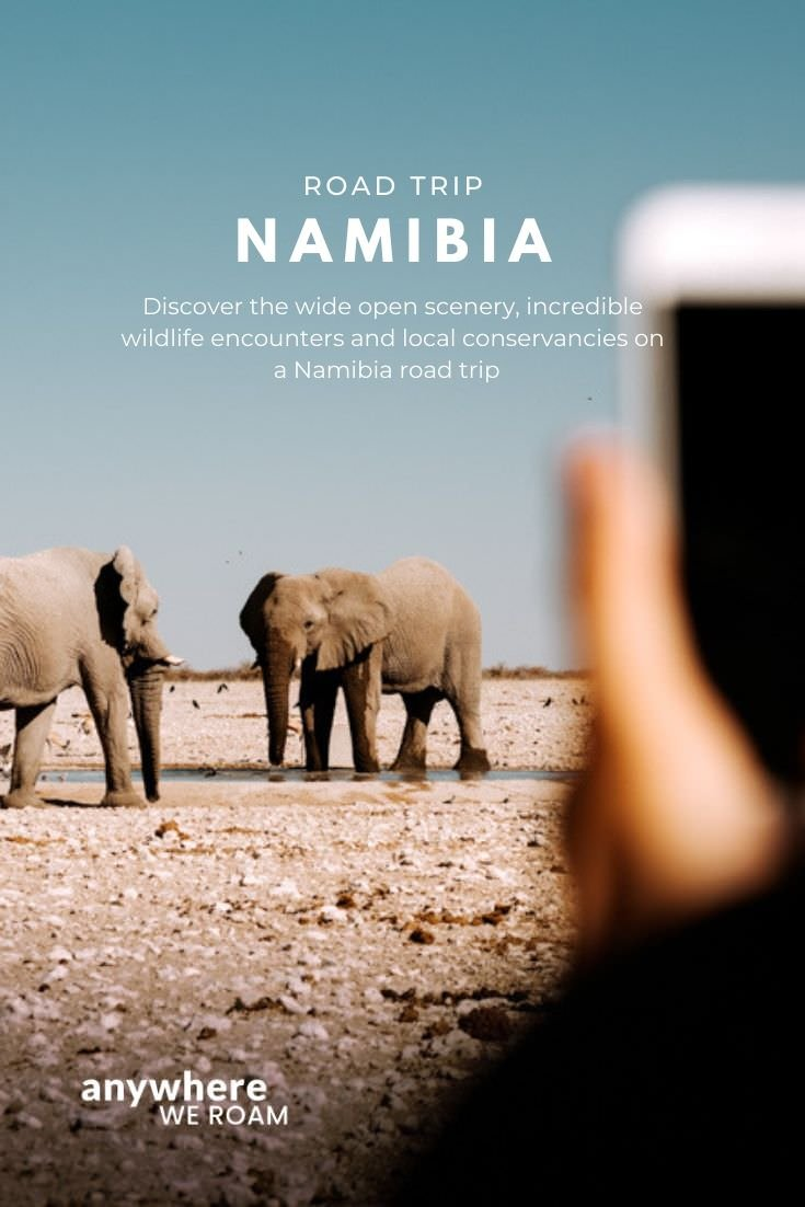 A 2-week Namibia road trip covering the incredible scenery and wildlife viewing of this fascinating country. Namibia Itinerary. #sossusvlei #damaraland #skeletoncoast #etosha #waterberg