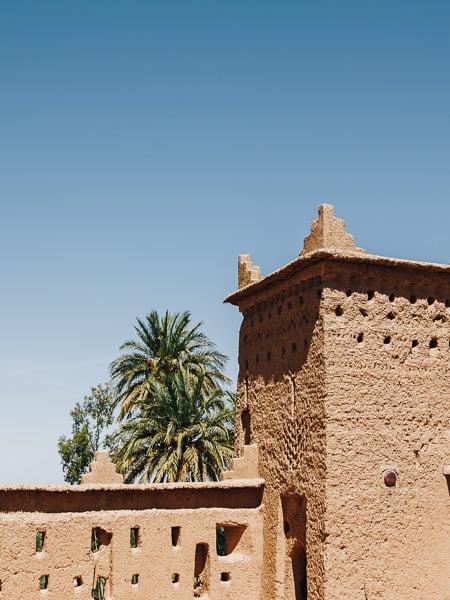Skoura Palmery, South Morocco