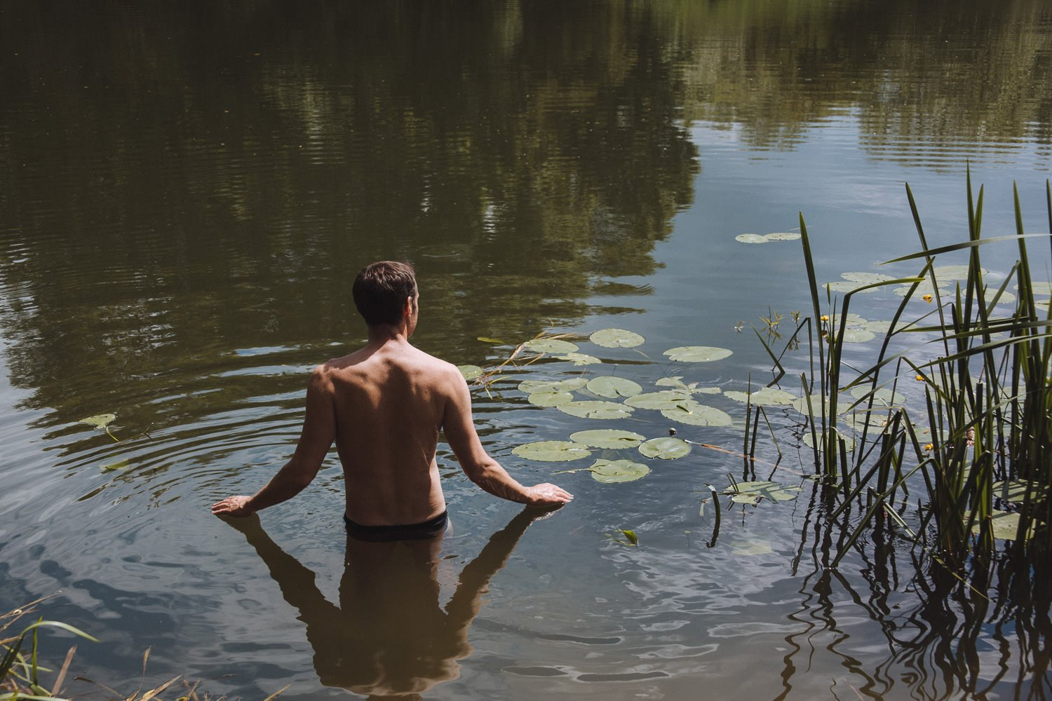 swimming beside reeds in the Thames