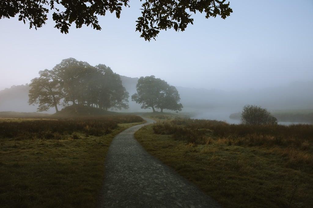 A wintery misty scene near Elterwater in the Lake District