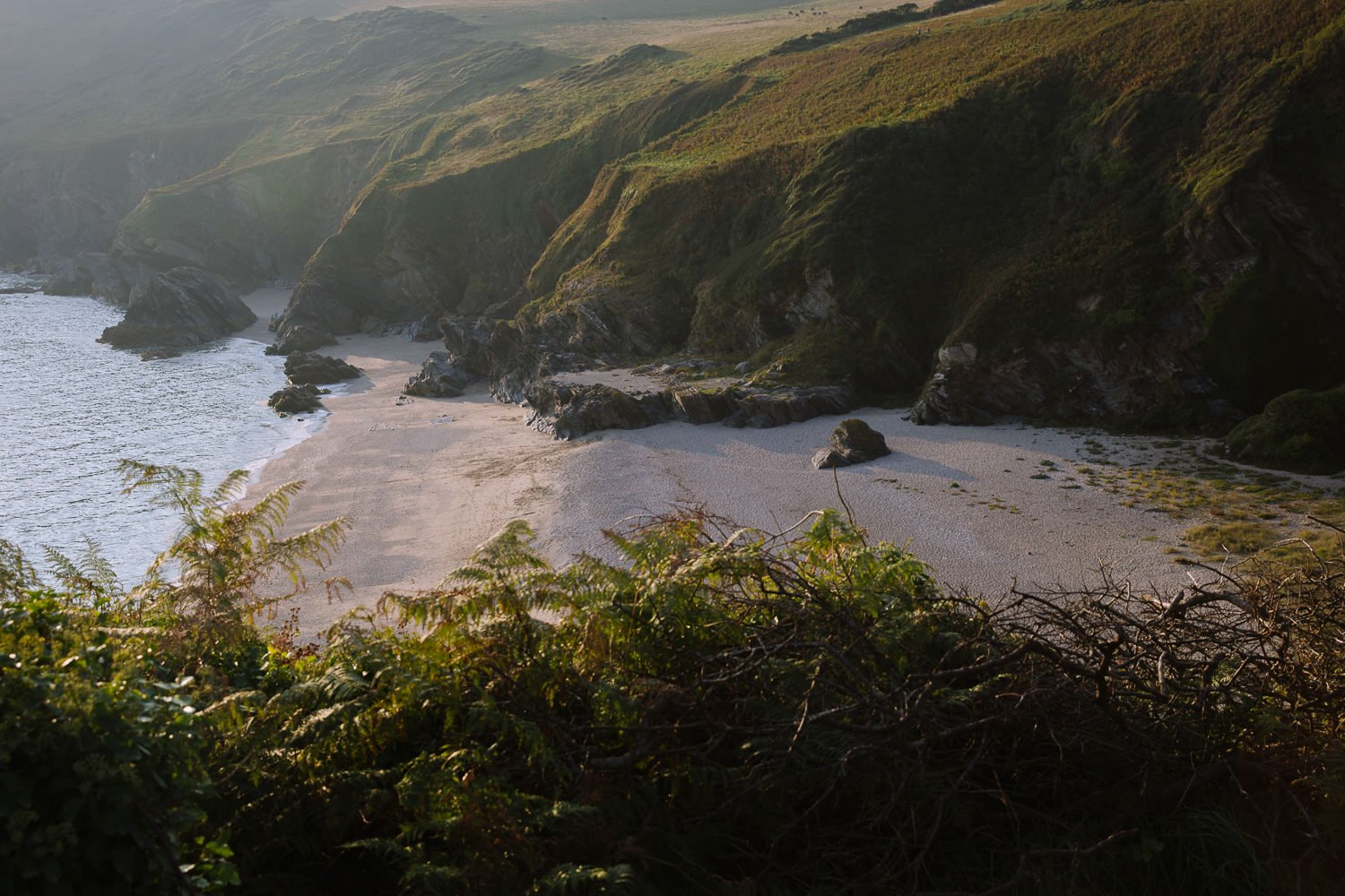 A beautifully sandy beach surrounded by cliffs in late afternoon light.